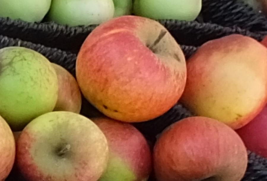 Hafner Heini´s Obstverkauf
