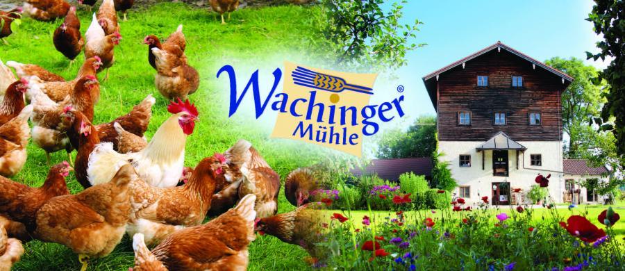 Wachinger Mühle