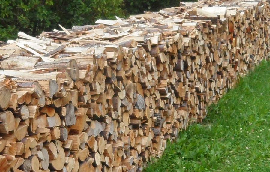 Reiter-Holz
