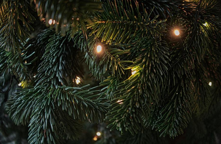 23.11.2019 bis 24.11.2019 Weihnachtsmarkt Babensham