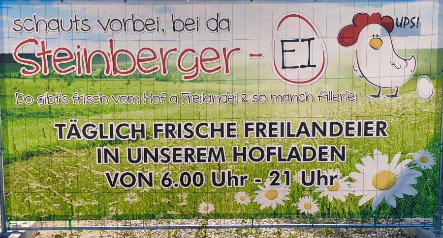 Steinberger-Ei