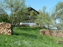 Behamhof