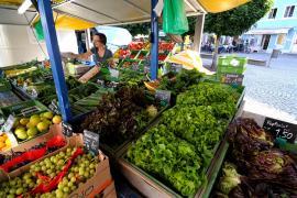 Grüner Markt Wasserburg